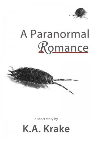 a paranormal romance cover KA Krake